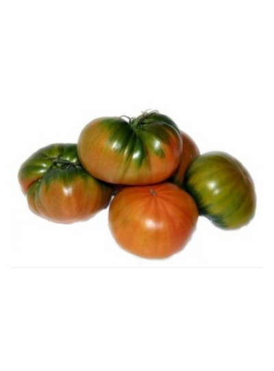 TOMATE RAF EXTRA